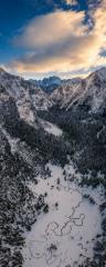 Mountain Meadow Morning