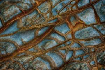 Veins of Stone #3