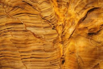 Golden Wall at Yellowbanks