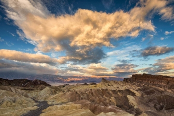 Morning Glory at Zabriskie Point