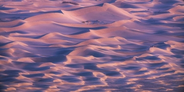 Mesquite Dunes Morning Glow