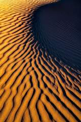 Mesquite Dune Patterns at Sunset