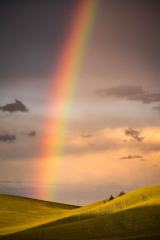 Palouse Rainbow #1