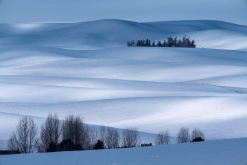 Winter Hills of Palouse