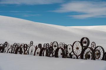 Wagonwheel Fence in Winter
