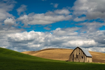 Abandoned Barn in the Palouse