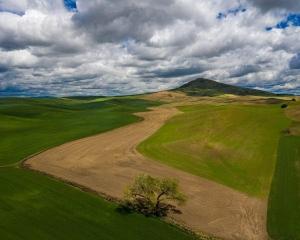 Steptoe Butte Aerial