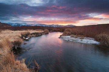 Owens River Valley Rising