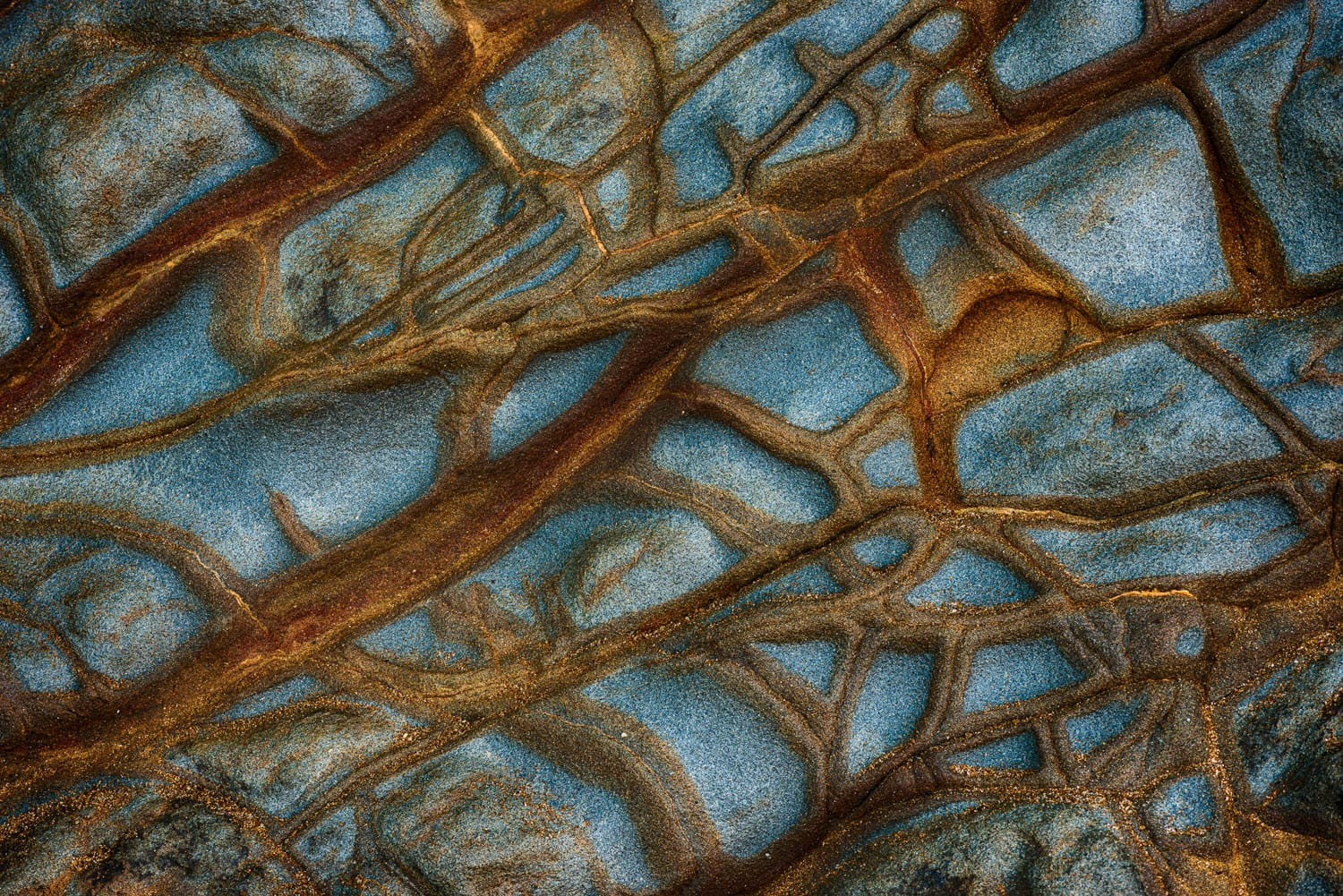Rock patterns create a mix of warm and cool tones in this coastal abstract