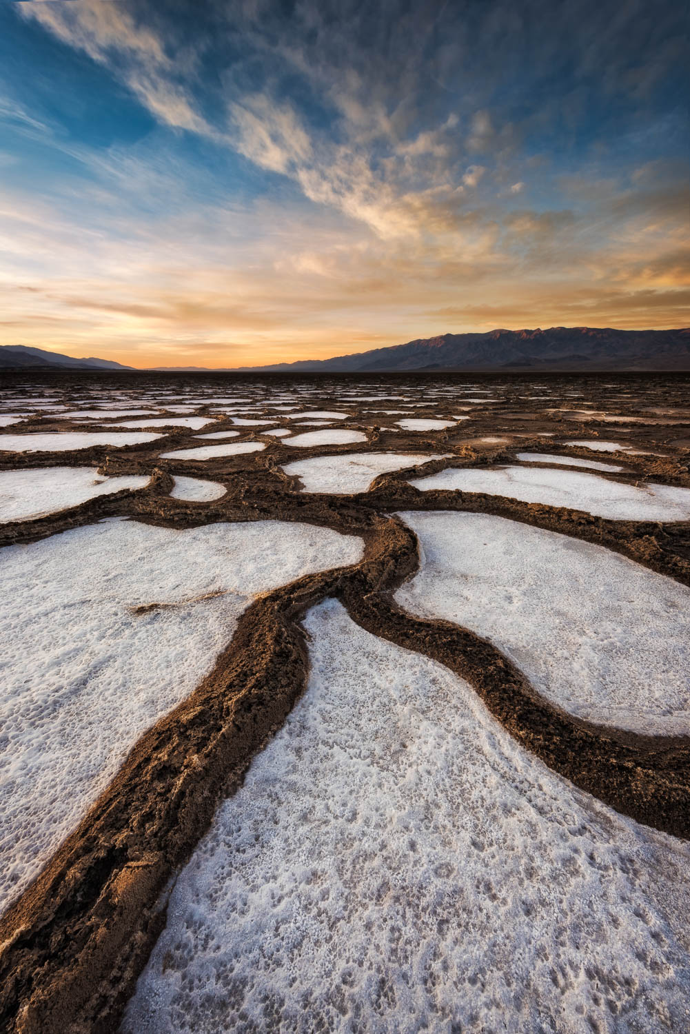 dark mud winds through white salts in Death Valley
