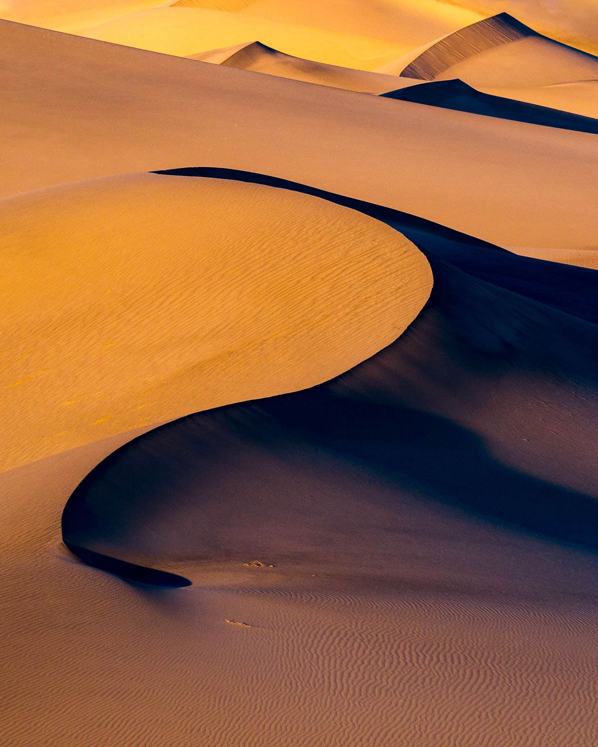 Golden light and sand dune curves