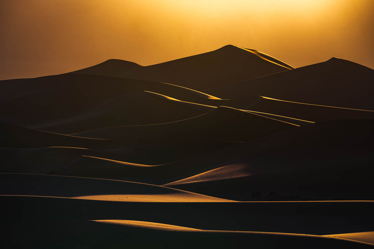 Layers of sand dunes with golden lit edges and dark shadows