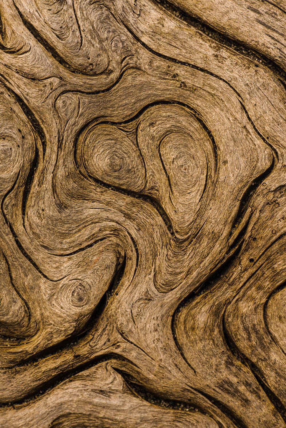 Driftwood patterns swirl in the form of a heart