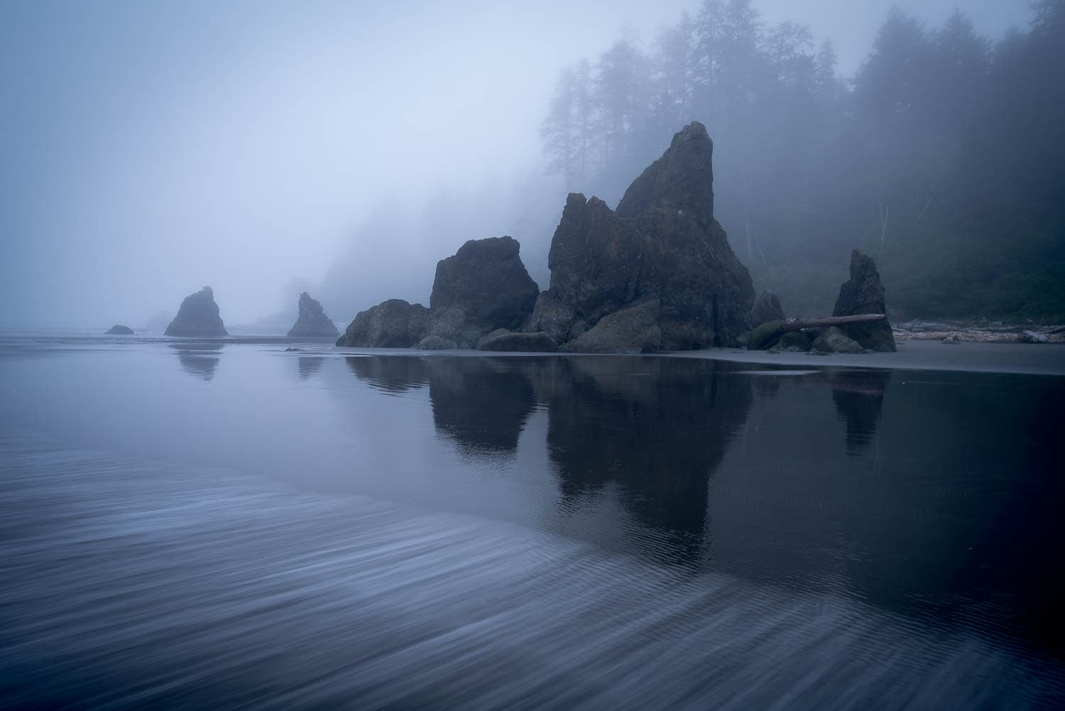 Foggy beach with rock outcropping and forest