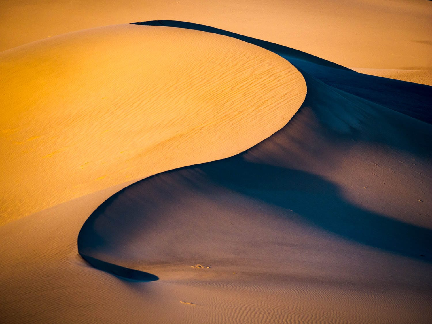 Soft golden light on sand dune curve