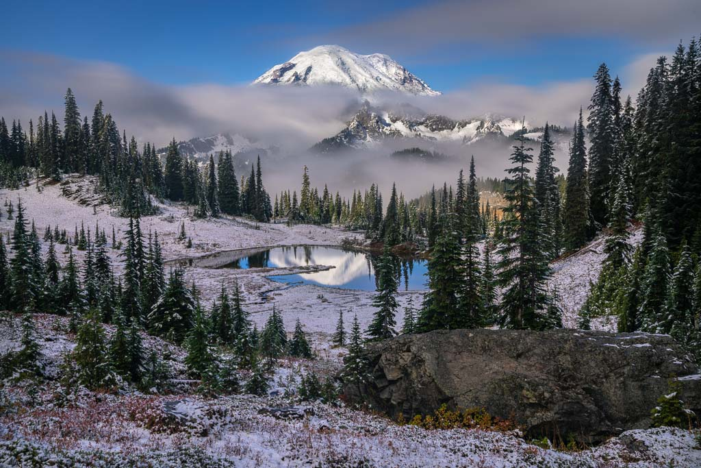 Fresh snow and fall foliage in alpine meadow at Mount Rainier