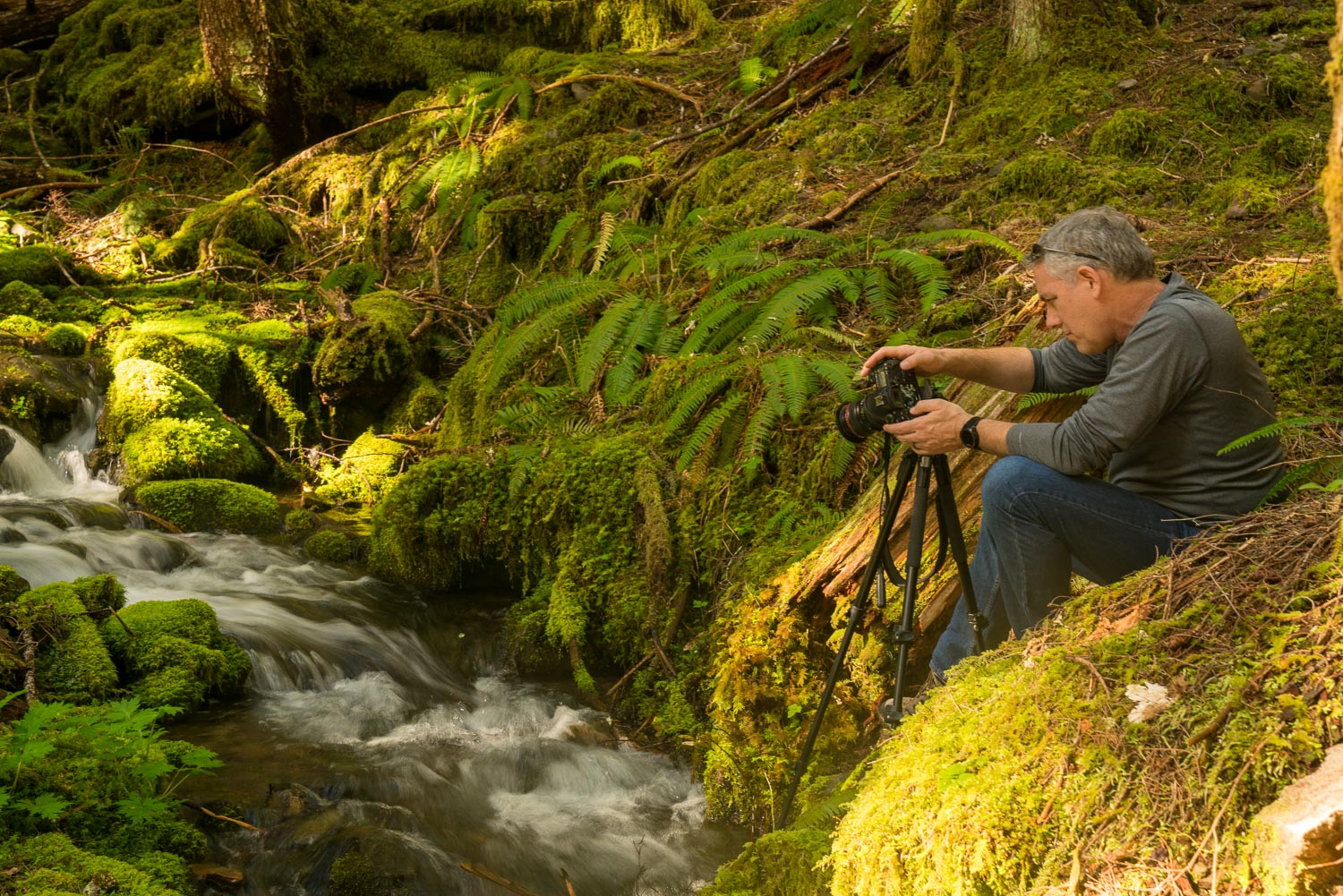 photographer setting up shot with tripod along mossy creek