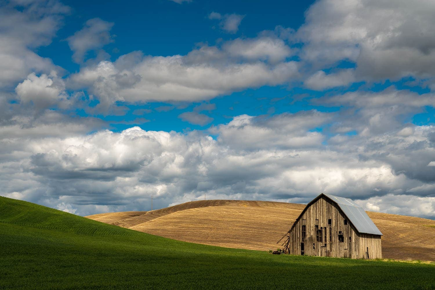 Abandoned wood barn in green field under puffy clouds