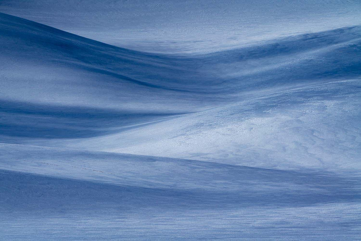 Snow drifts over rolling hills with blue hue