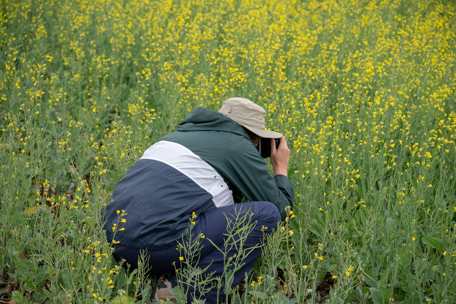 palouse phtoography workshop participants in the field